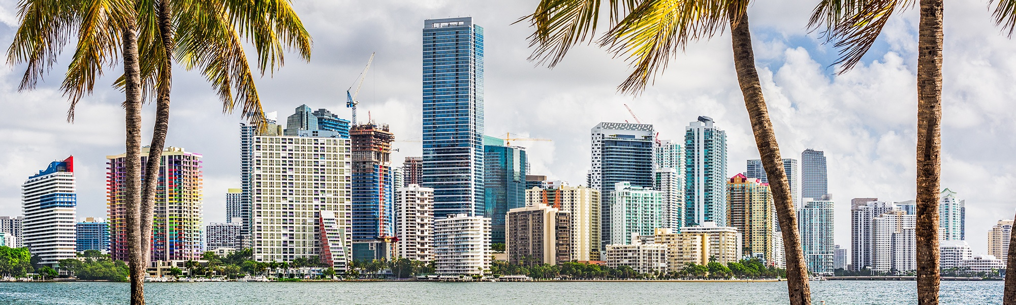 Miami_Crop.jpg