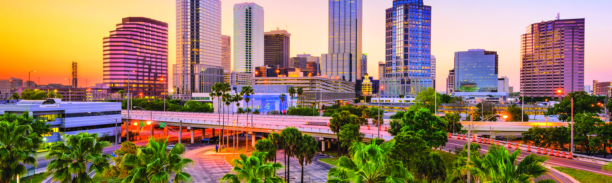 Tampa, FL.jpg